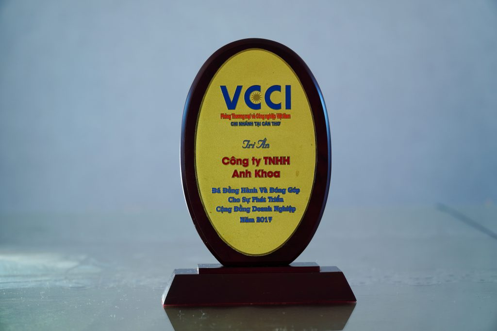 Medal VCCI 2017