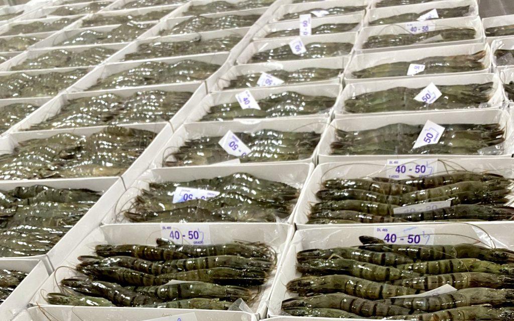 ANH KHOA SEAFOODS – Doanh nghiệp xuất khẩu uy tín năm 2019